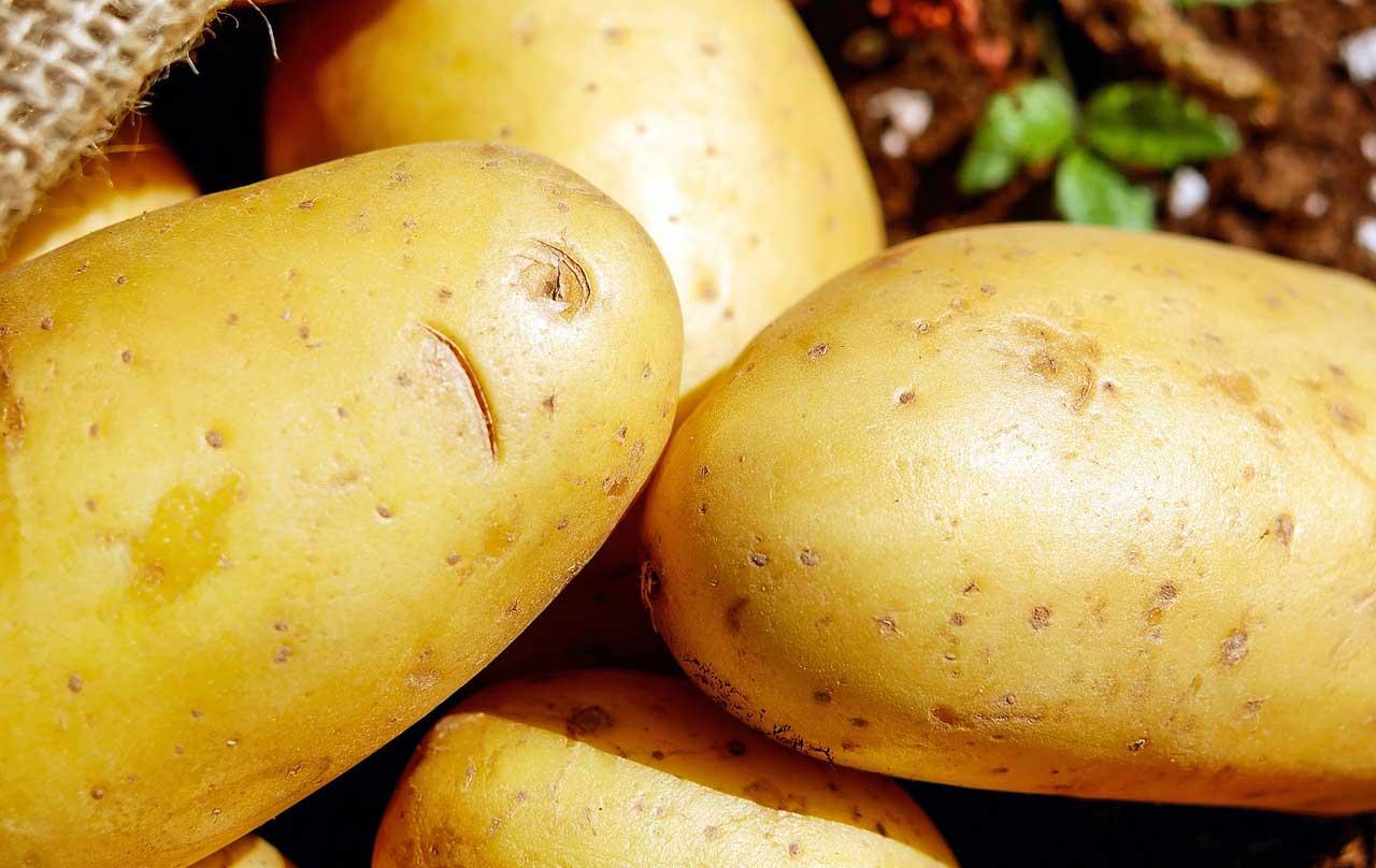 Photo of Kartoffeln
