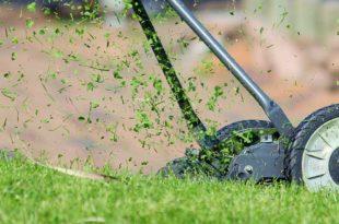Rasen mähen - Anleitung und Tipps