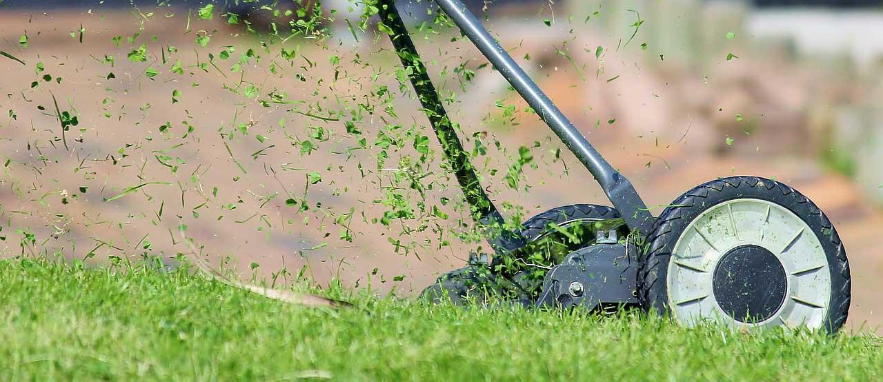 Rasen mähen - Anleitung für den perfekt gemähten Rasen