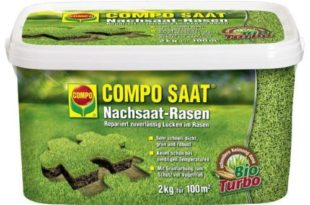 Compo SAAT – Nachsaat-Rasen Test