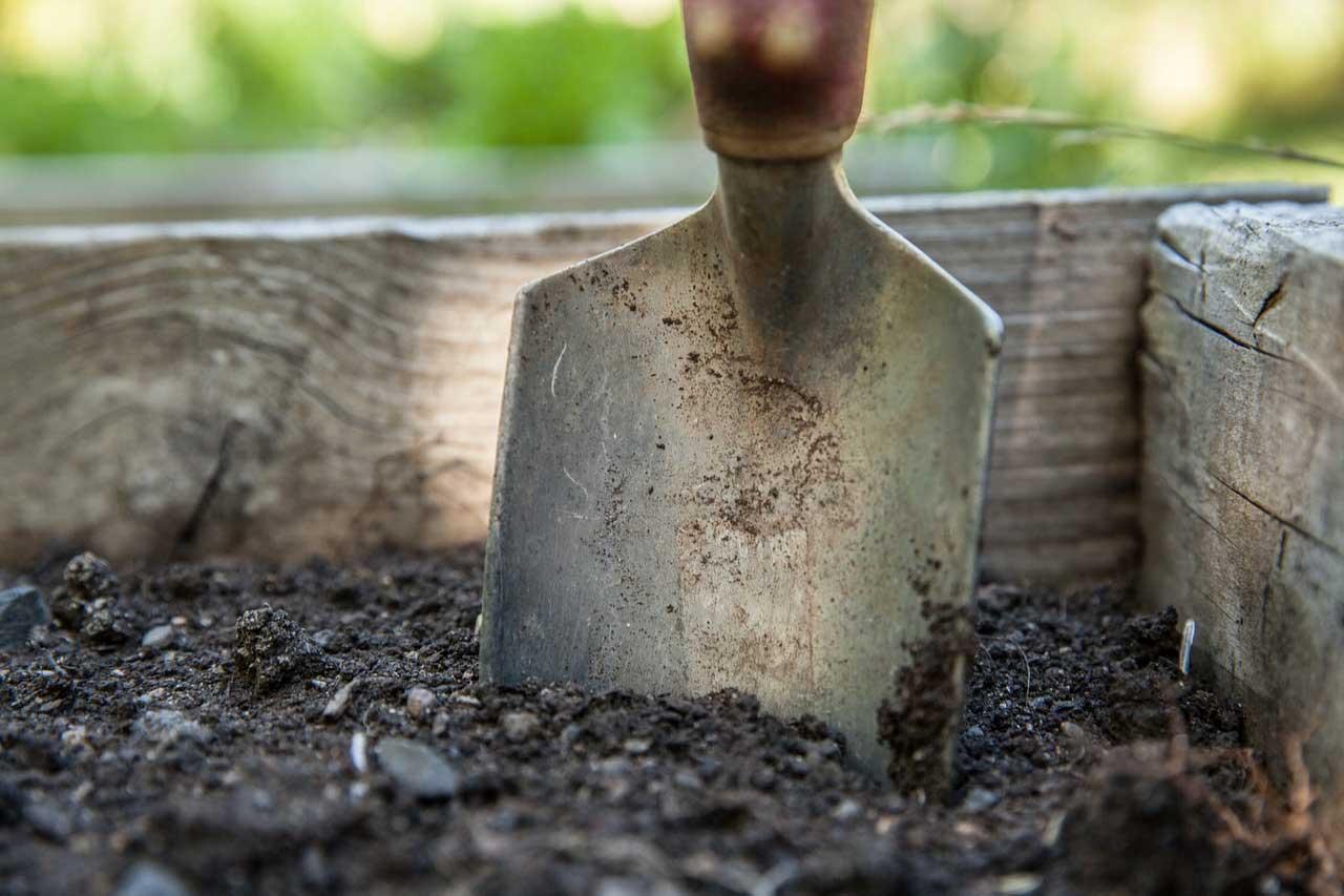 Photo of Rasenerde als Grundlage für den perfekten Rasen