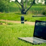 Rasen anlegen - in 11 Schritte zum Traumrasen