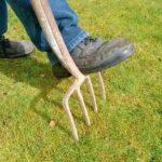 Rasen vertikutieren und belüften leicht erklärt.