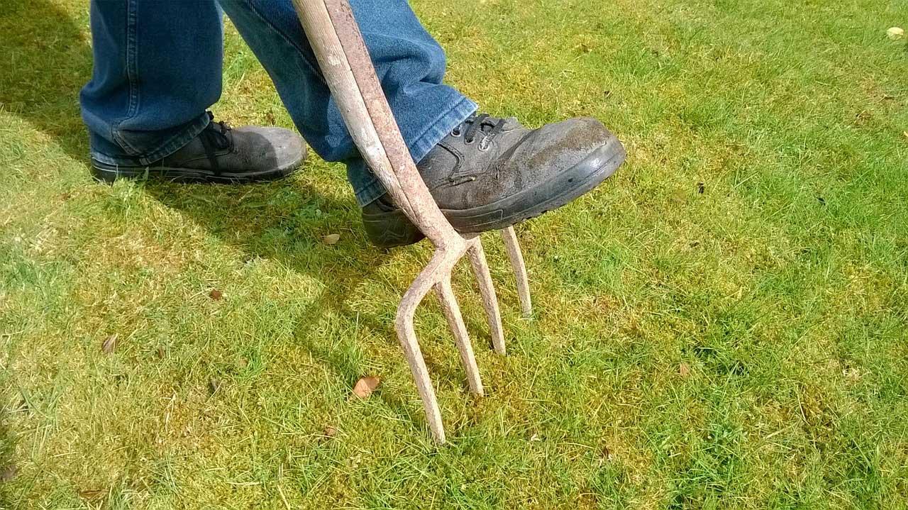 Photo of Rasen vertikutieren und lüften