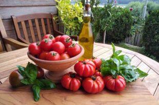 Pralle Tomaten durch die richtige Pflege