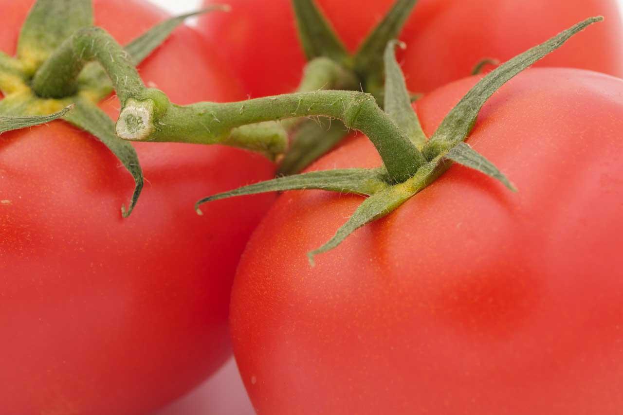 Pralle Tomaten - So schön können sie sein