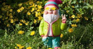 Gartenzwerge - was muss ich beim Kauf und Aufstellen beachten?
