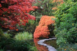 Ökologischer Garten einfach gemacht