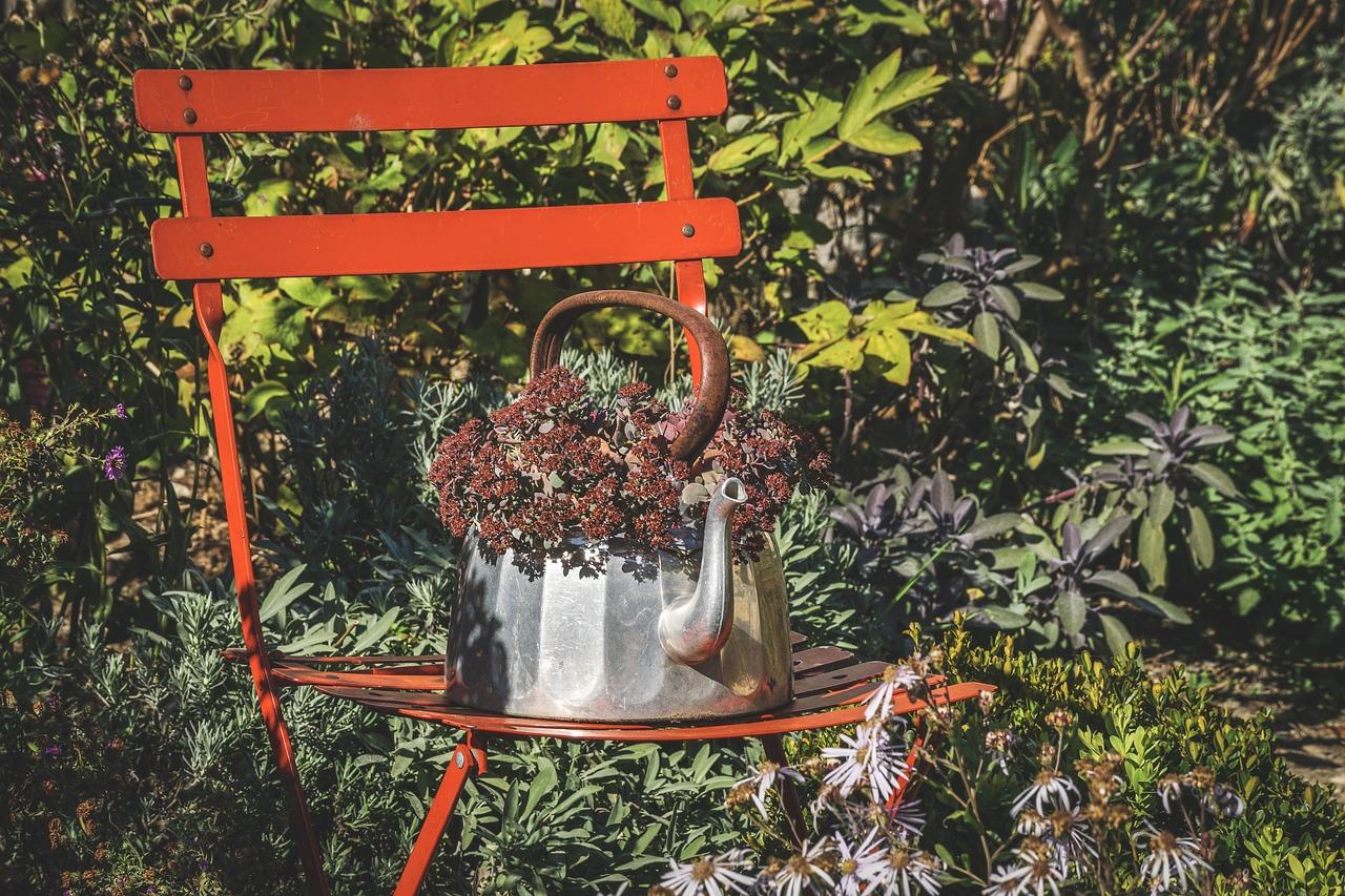 Photo of So wird der Garten fit für den Winter: Gartenpflege im Herbst