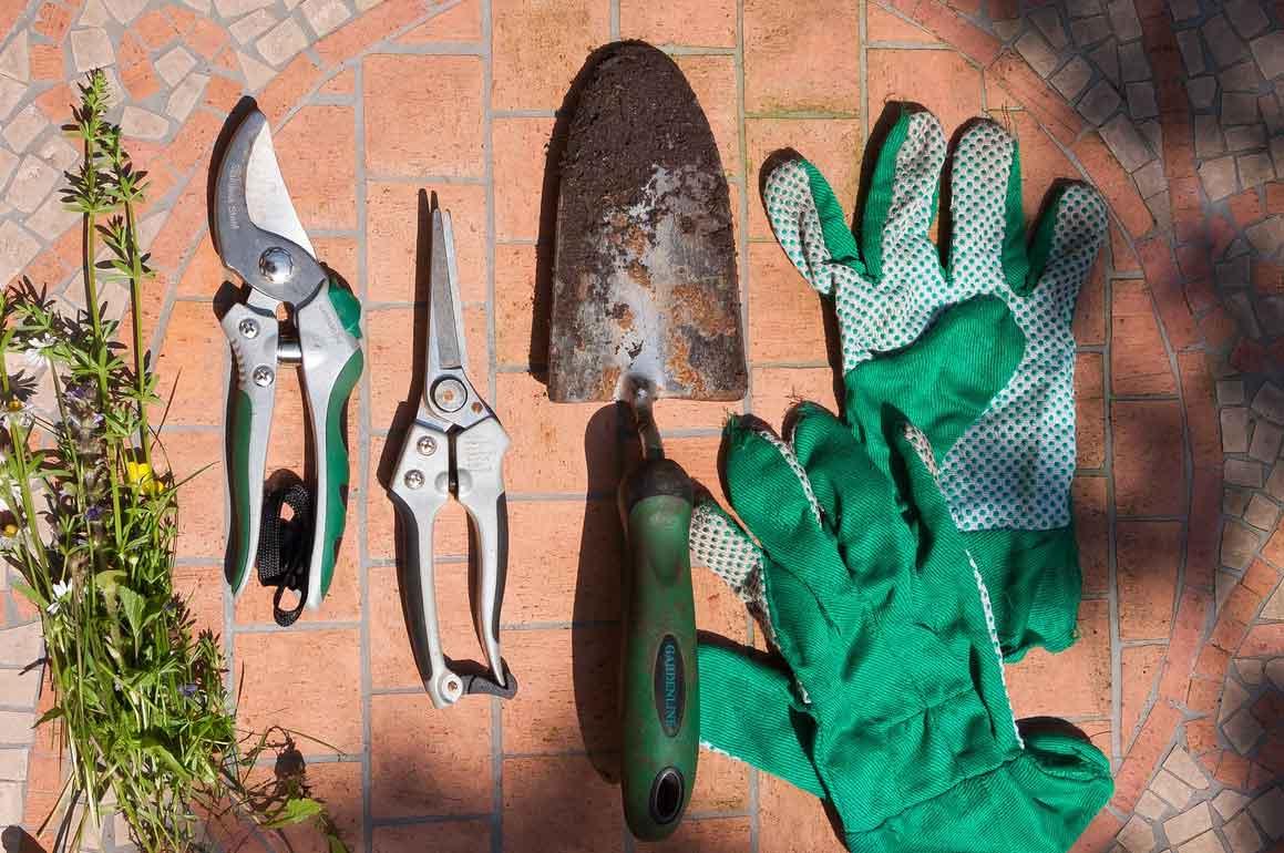 Jeder Einsatz erfordert eine gesonderte Gartenschere