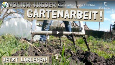 Gartenarbeit: Beete, Frühbeet und Folientunnel im März