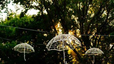 Photo of Der eigene Garten ins rechte Licht gerückt