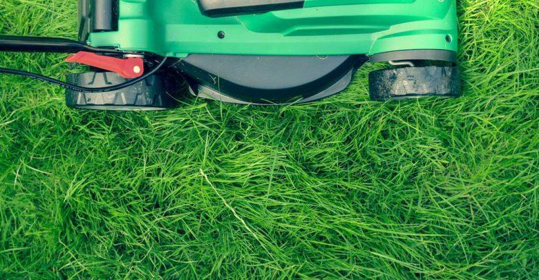 Photo of Welcher Rasenmäher ist für wen geeignet?