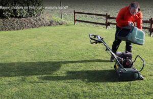 Rasen mähen im Februar - warum nicht?