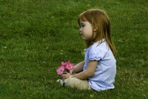 Einen Rasen neu anlegen ohne umgraben – Anleitung und Tipps