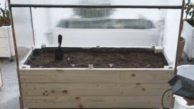 Bild von SMART HOME IM GARTEN – DIY Gewächshaus selber bauen