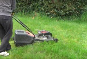 Sehr langen Rasen mähen - So schafft es der Rasenmäher trotzdem