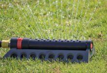 Bild von Rasen wässern in der Trockenzeit –  Wie oft, Wie Lange und Wann?