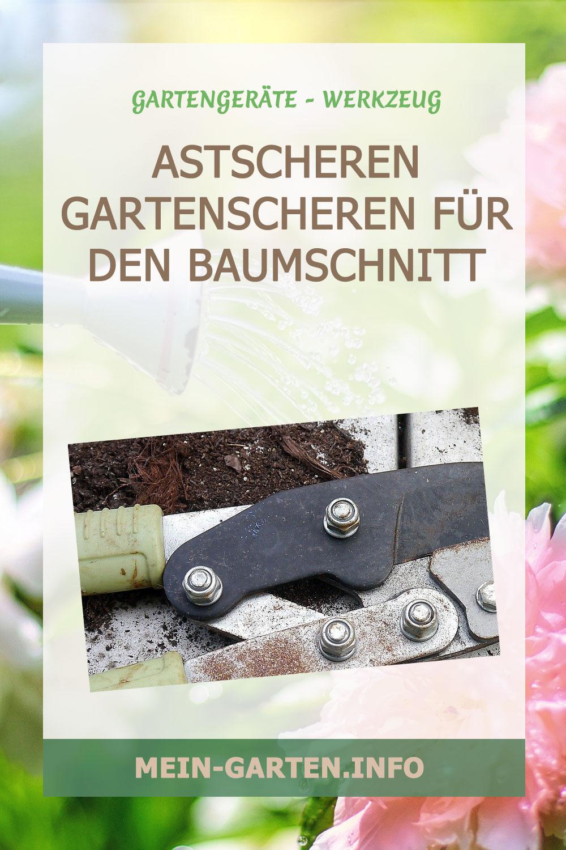 Astscheren Gartenscheren für den Baumschnitt
