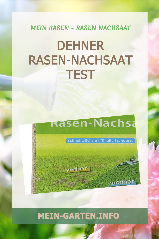 Dehner Rasen-Nachsaat Test