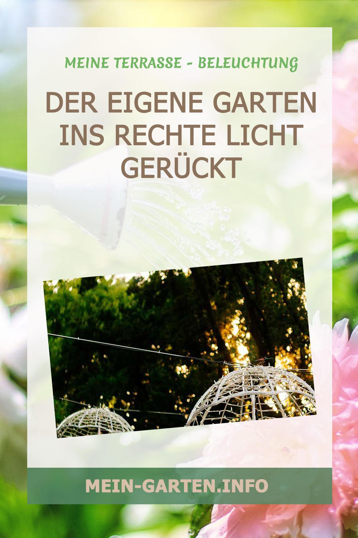 Der eigene Garten ins rechte Licht gerückt