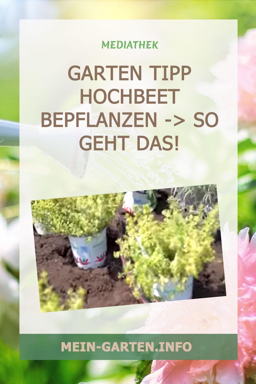 Garten Tipp Hochbeet bepflanzen -> So geht das!