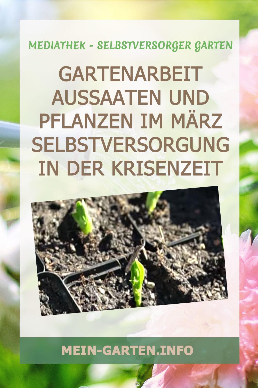 Gartenarbeit Aussaaten und Pflanzen im März Selbstversorgung in der Krisenzeit