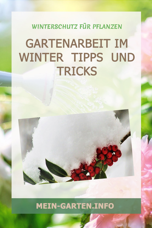 Gartenarbeit im Winter: Tipps- und Tricks