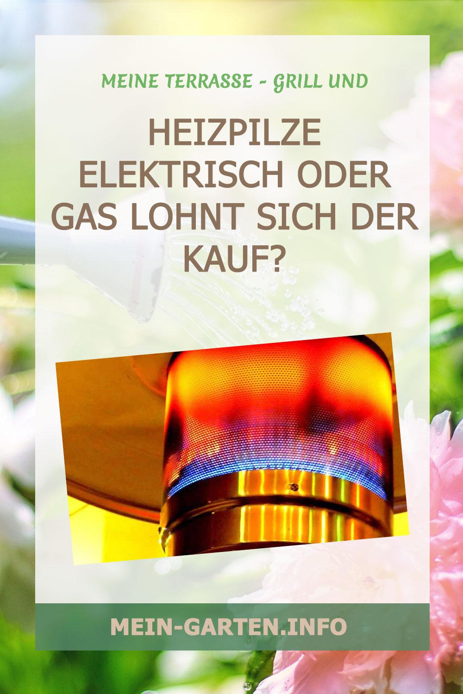 Heizpilze elektrisch oder Gas Lohnt sich der Kauf?