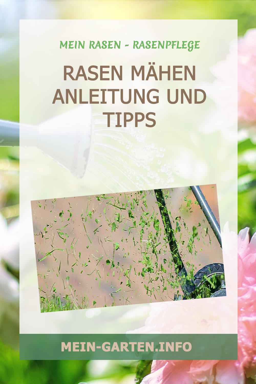 Rasen mähen – Anleitung und Tipps