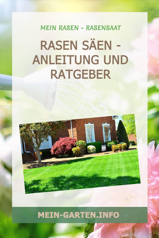 Rasen säen – Anleitung und Ratgeber
