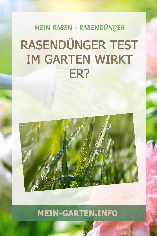 Rasendünger Test im Garten Wirkt er?