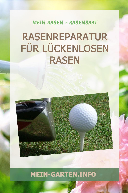 Rasenreparatur für Rasen mit Rasensaat, Keimsubstrat und Rasendünger