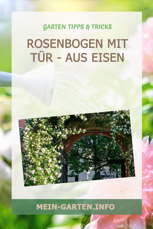 Rosenbogen mit Tür – aus Eisen, Holz oder verzinkt
