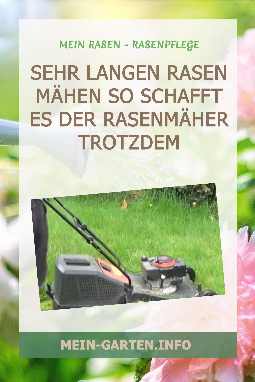 Sehr langen Rasen mähen So schafft es der Rasenmäher trotzdem