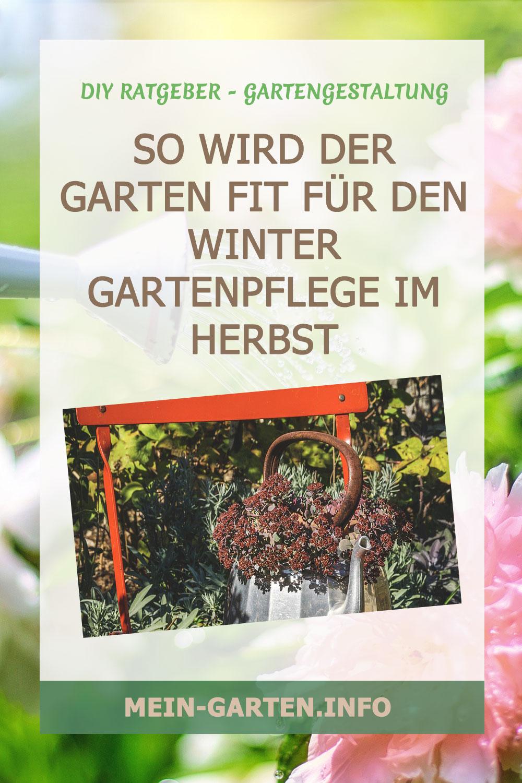 Gartenpflege im Herbst : So wird der Garten fit für den Winter