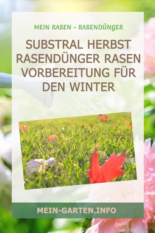 Substral Herbst Rasendünger Rasen Vorbereitung für den Winter