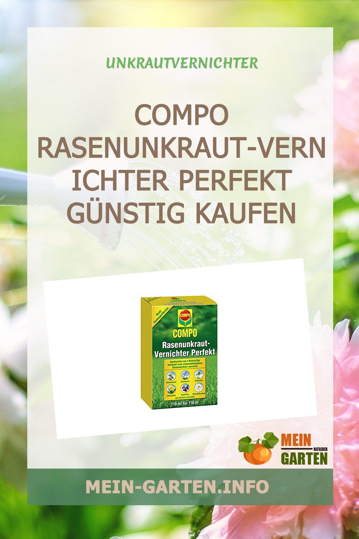 COMPO Rasenunkraut-Vernichter Perfekt günstig kaufen