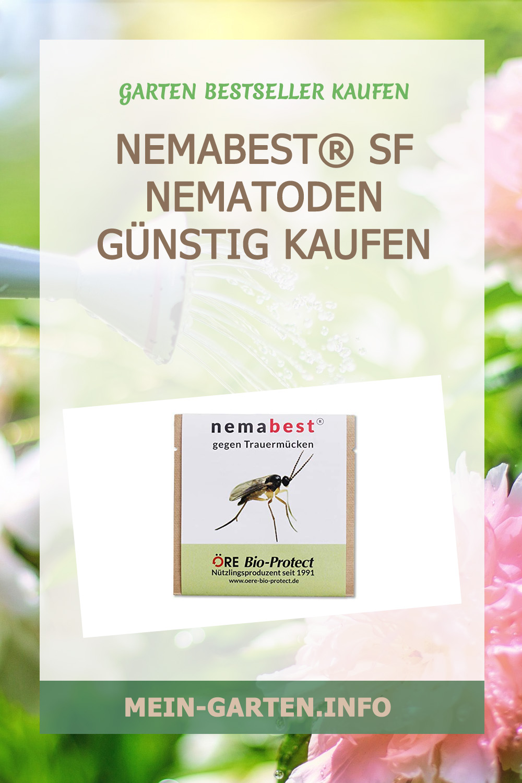 nemabest® SF Nematoden günstig kaufen