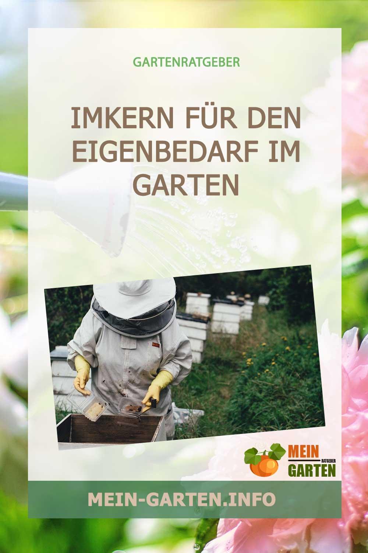 Herr der Bienen werden – Imkern für den Eigenbedarf im Garten