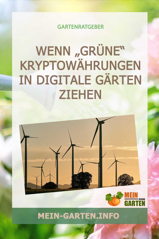 """Wenn """"grüne"""" Kryptowährungen in digitale Gärten ziehen"""