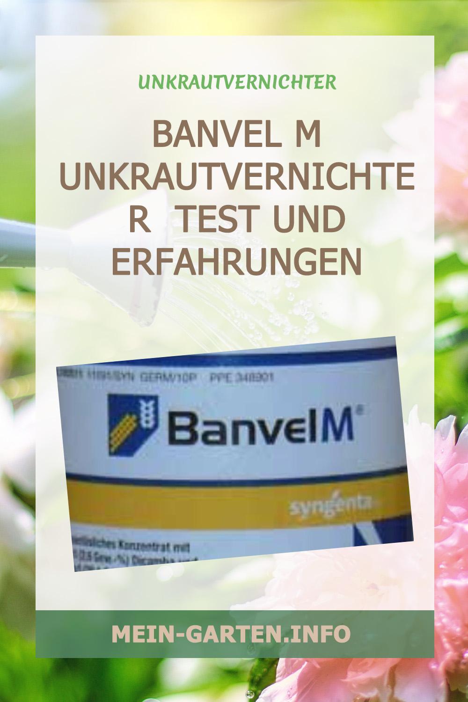 Banvel M – Test und Erfahrungen mit dem Unkrautvernichter