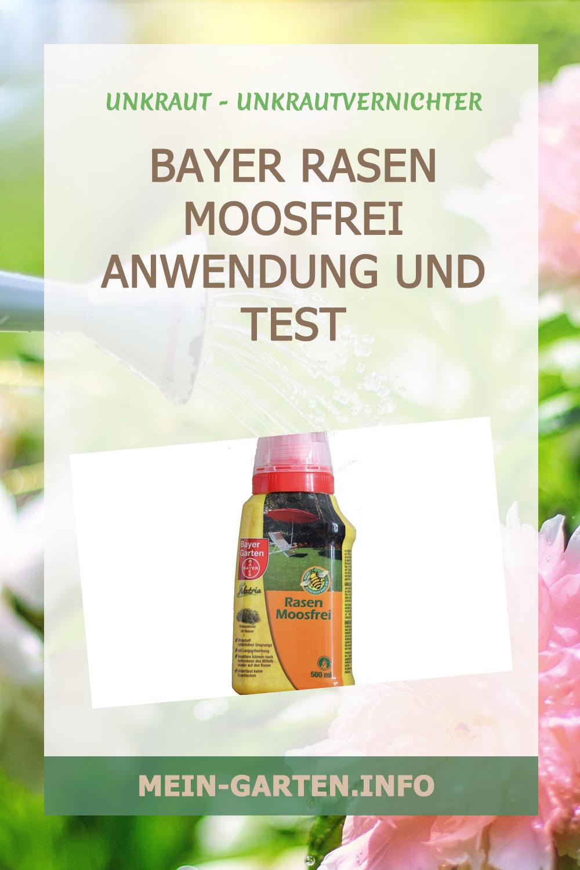 Bayer Rasen Moosfrei Anwendung und Test