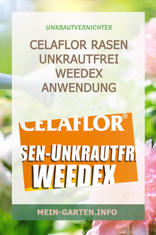 Celaflor Rasen Unkrautfrei Weedex  Anwendung