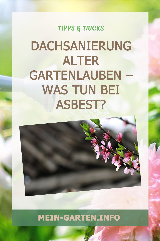 Dachsanierung alter Gartenlauben – Was tun bei Asbest?