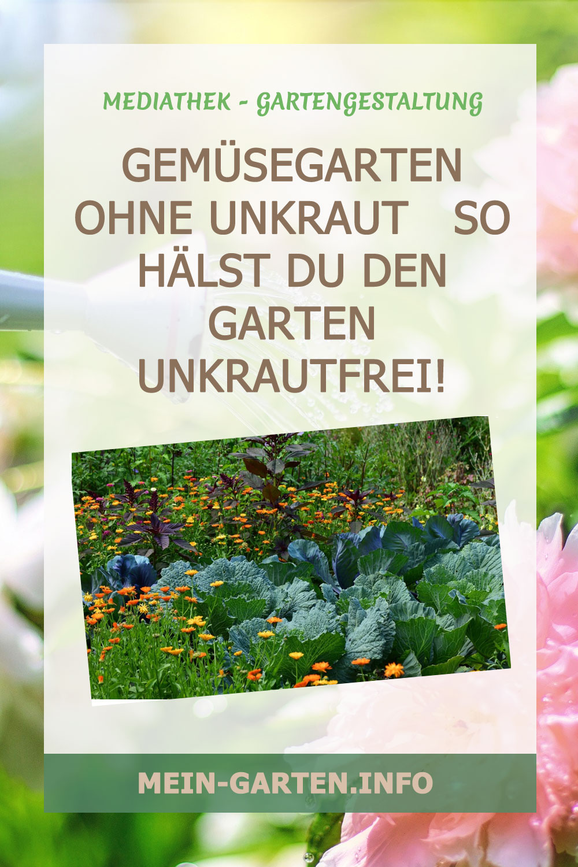 Gemüsegarten ohne Unkraut   So hälst Du den Garten unkrautfrei!