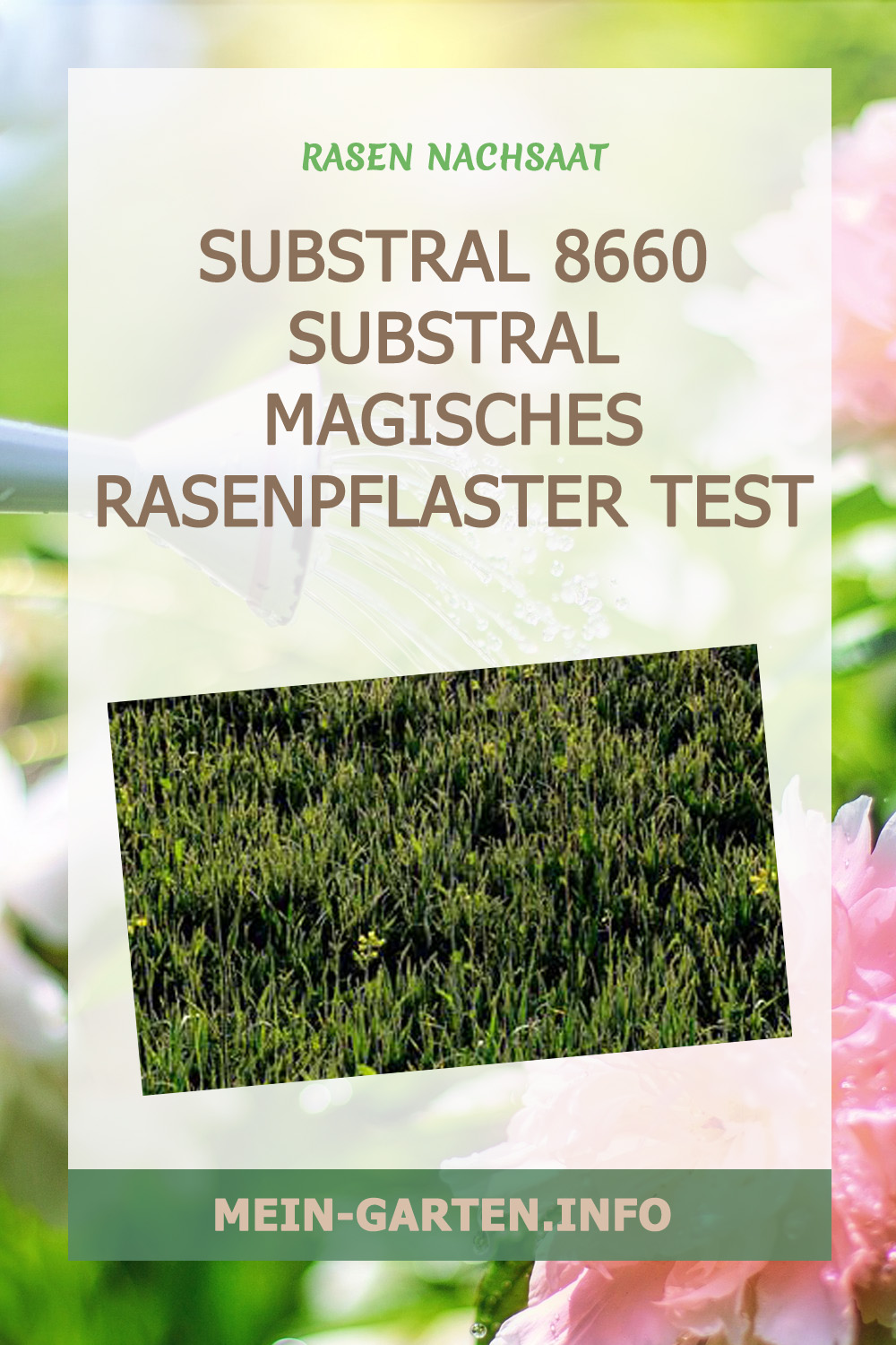Substral 8660 Substral Magisches Rasenpflaster Test