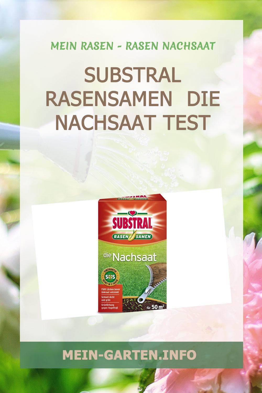 Substral Rasensamen  Die Nachsaat Test
