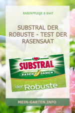 Substral der Robuste – Test der Rasensaat