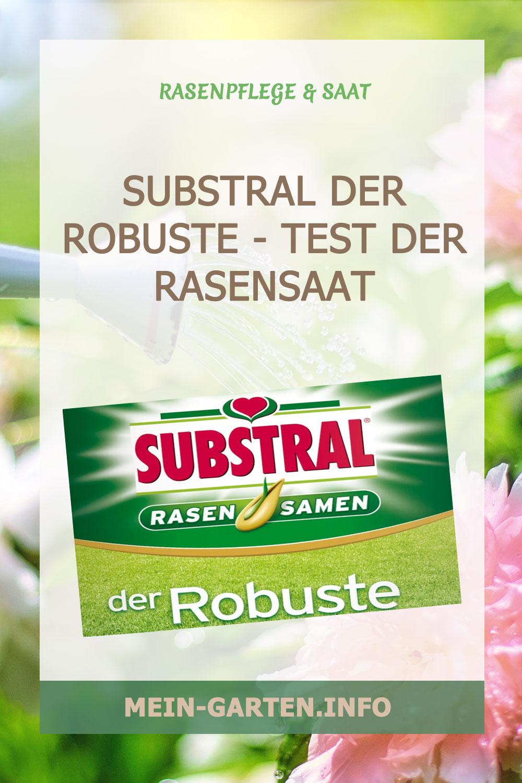 Substral der Robuste – Test der Rasensaat